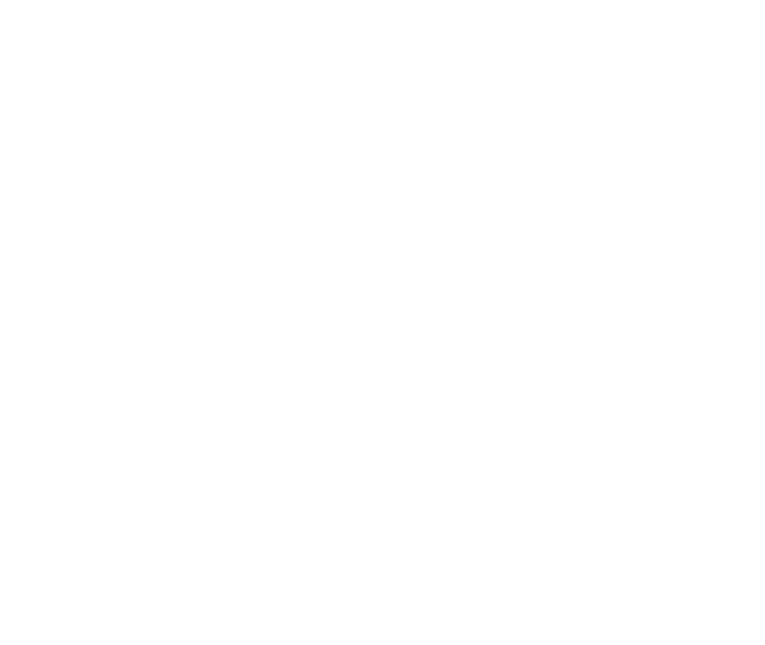 Envision Entertainment & Events Co.